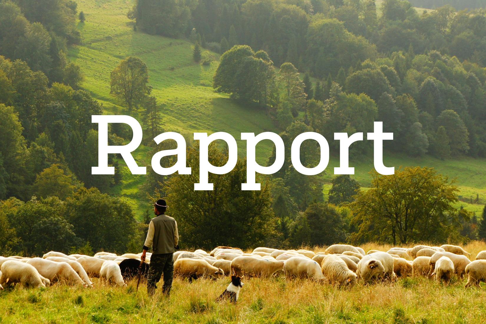 louisejansson_portfolio_SVT_Rapport